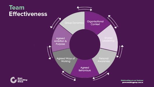 Team effectiveness circle